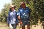 Karen &; Bill McLennan at Outback Olive Grove Sommariva Charleville
